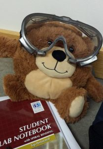 bear and orgo lab notebook