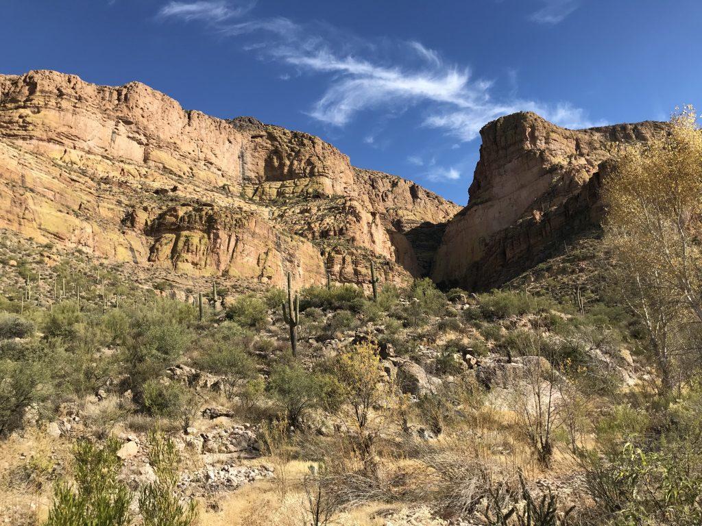 A canyon in AZ
