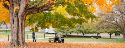 Photo of men at a picnic table taking photos of the fall leaves