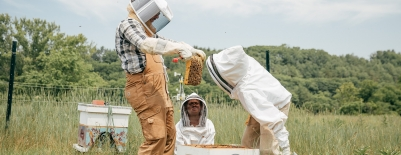 Photo of students examining a hive frame at the Organic Farm