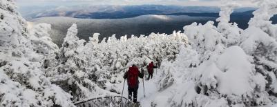 Photo of students snowshoeing on Mount Moosilauke