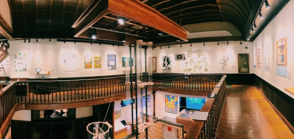 A panorama shot of the Fairbanks museum showing all three sides of the exhibit created by Dartmouth students