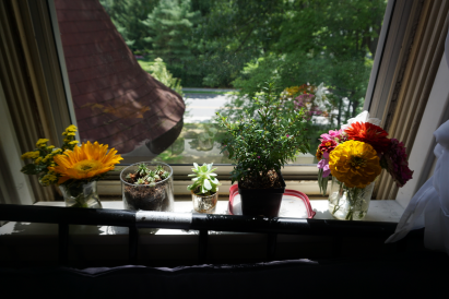 Dorm Room View with Flowers
