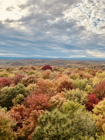The view from the top of Gile Fire Tower!