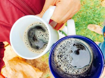 root beer cups