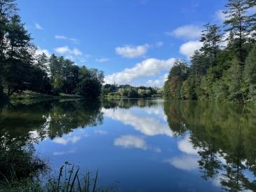 sydney wuu pond reflection