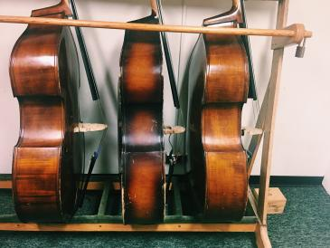 upright basses in a row