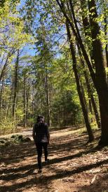 person in sunny woods