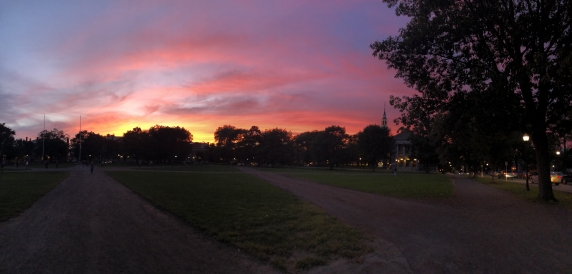 Sunset on the Green