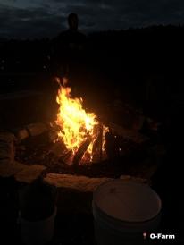 Fall_Bonfire