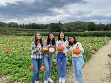 Blog_2049×1536_pumpkins
