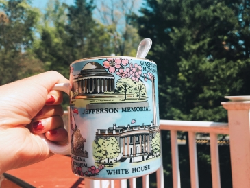 Washington DC, mug, home