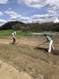 A picture of two people working on the farm