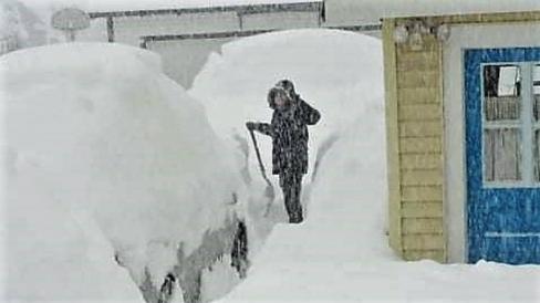 Gui in a Snowstorm