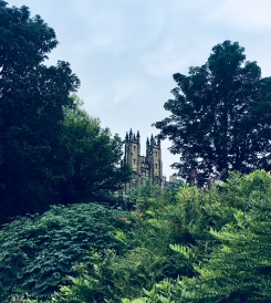A view of New College through the trees.