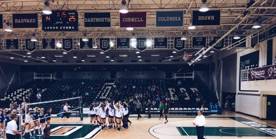 The volleyball team cheering at the end of their game.