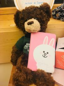 teddy passport