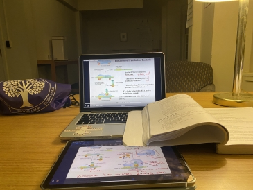 Studying in my Dorm's Common Room!