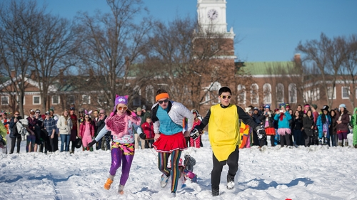 students dressed in colorful costumes pulling sleds in a human dogsled race