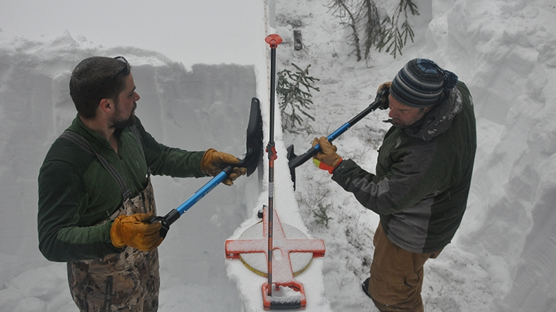 two researchers digging in the snow