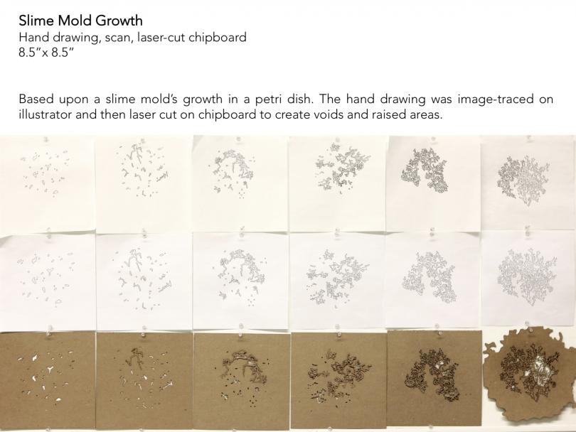 Slime Mold Growth