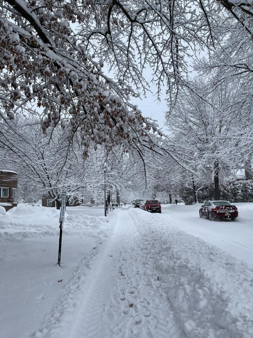 sydney wuu snowy path