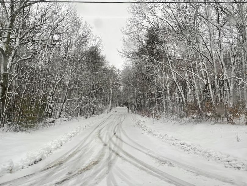sydney wuu snow