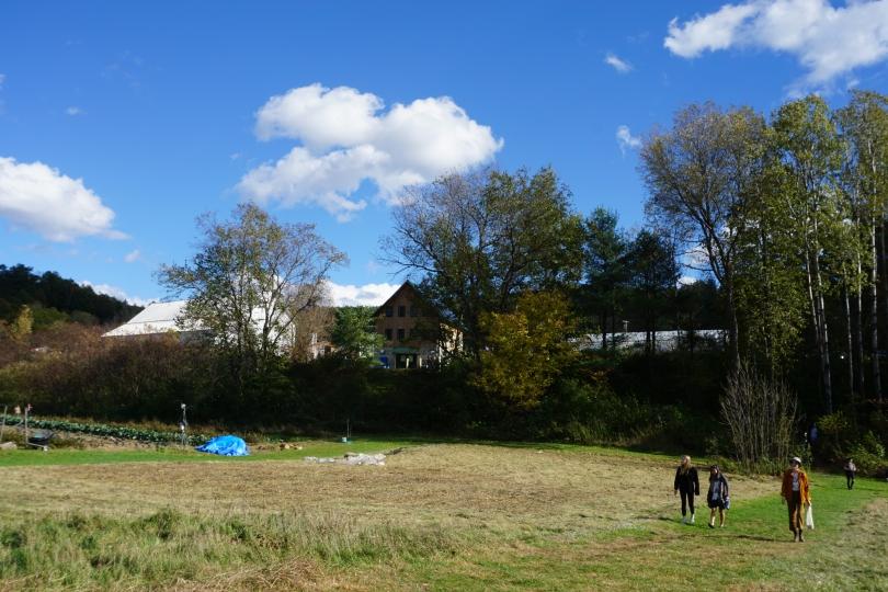 Organic Farm during Harfest