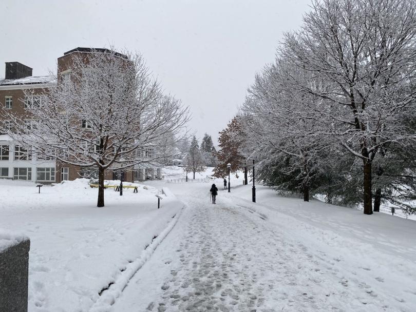 A walk home to McLaughlin
