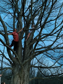 Climbing a tree at Dartmouth