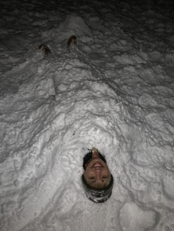 The ultimate defense tactic: bury yourself in the snow.