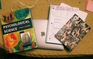 A laptop, psychology textbook, and 2 notebooks resting on a dining room table.