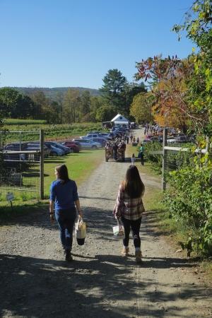 Walking at Riverview Farm