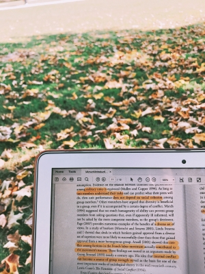studying outside in the fall