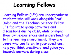 learning fellow