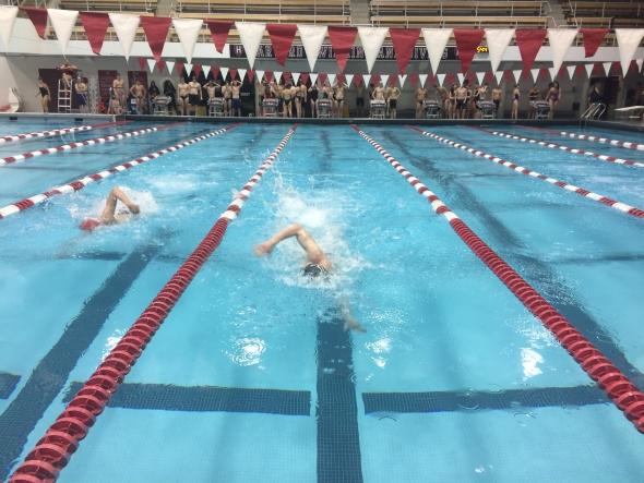 Harvard Pool