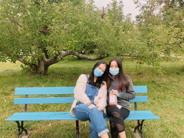 apple cider orchard