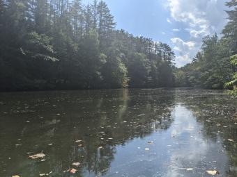 Mink Brook stream